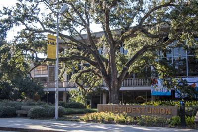 9-26-17 Live Oak Endowments