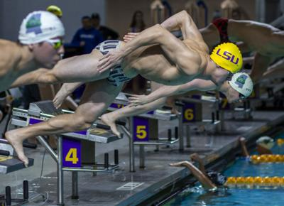 1.12.19 LSU Swimming