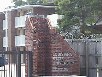 LSU Barbed Wire