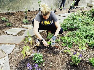 Student Sustainability Fund