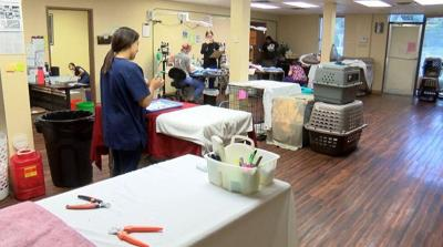 PETS Clinic of Lubbock