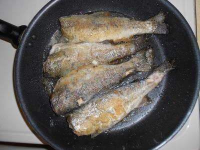friedtrout