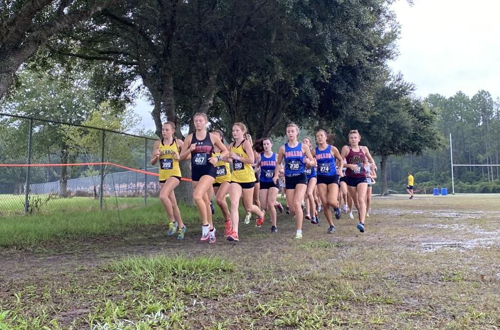 Buchholz runners lead pack at cross country meet