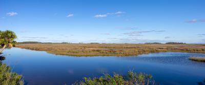 Panoramic view of coastal wetland grass marsh in Saint Marks National Wildlife Refuge in the panhandle of Florida with blue sky reflecting off of the brackish water