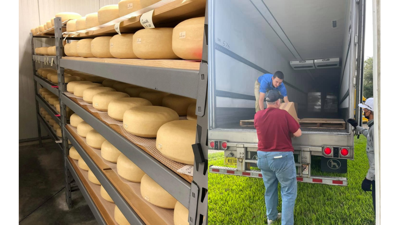 Hawthorne Creek Creamery cheese wheels and loading a Publix truck