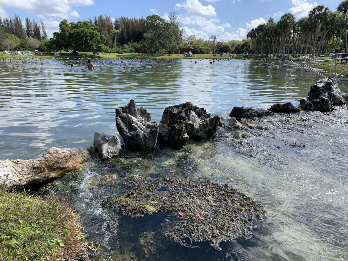 Warm Springs Mineral Park in Sarasota County