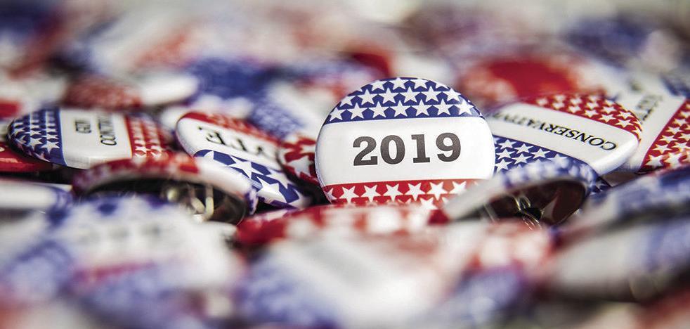 2019 voting