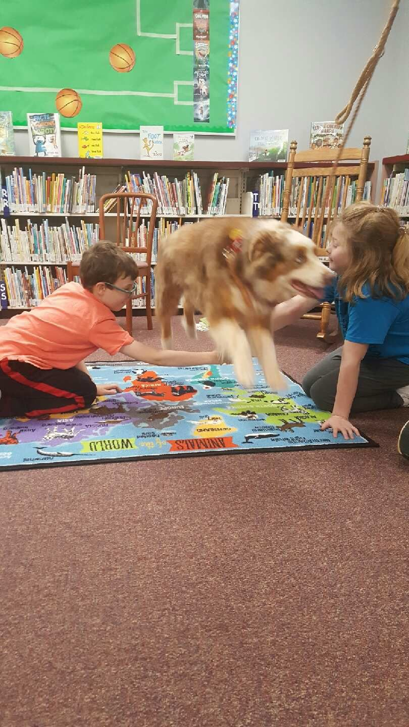 Bandit shows off tricks at library