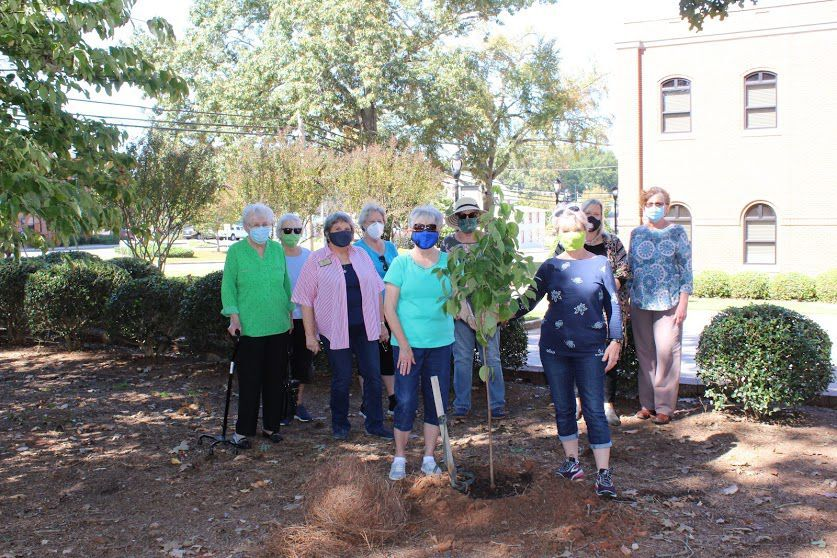 Trees planted in honor of Jacob Braselton