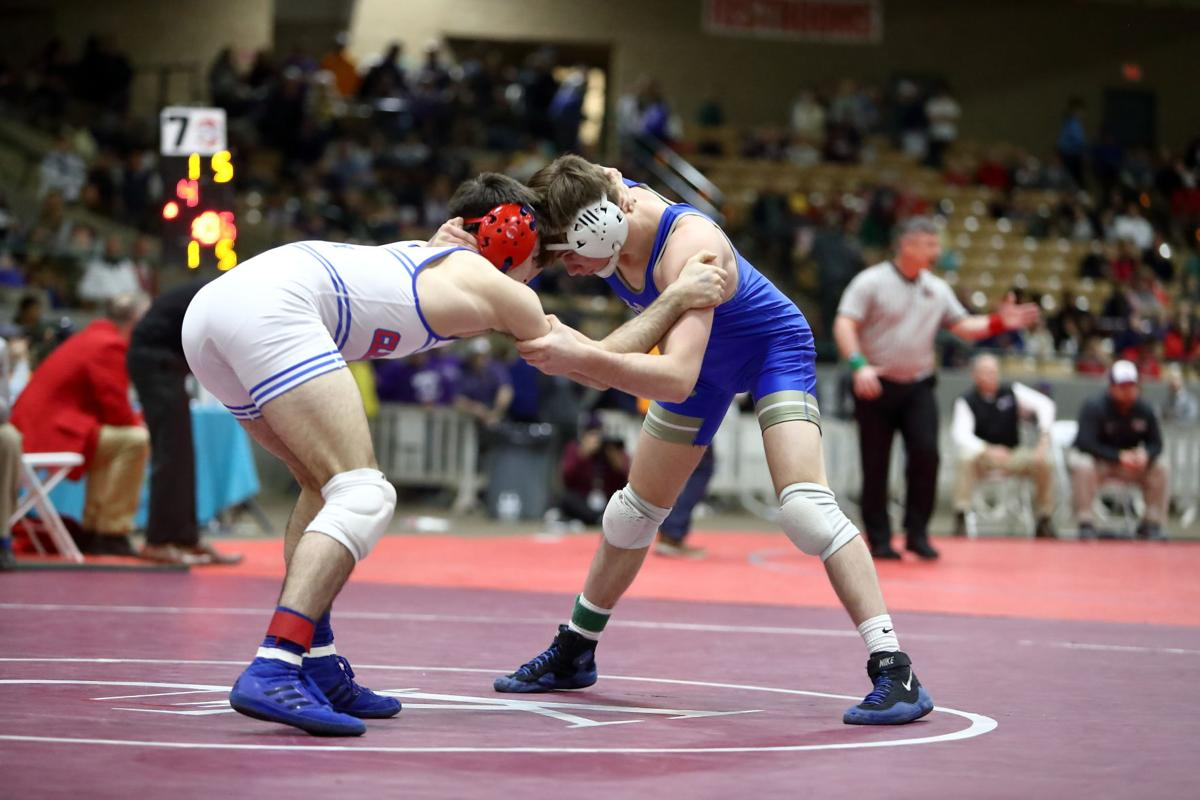 Alex Pergande (Wilson Central) wrestles Dillion Pendley (Tennessee) for the championship title at the TSSAA State Wrestling Championship.JPG