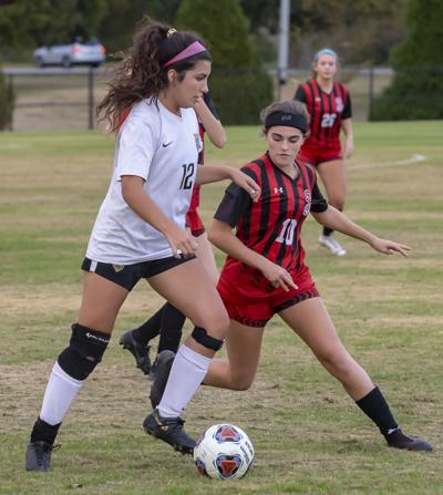 Central Magnet soccer falls 2-0 to Greeneville in state semifinals