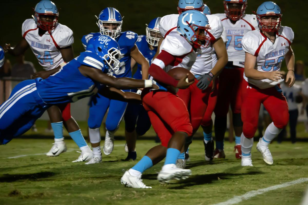 White House defender Harrison Autman-Springer (10) dives to bring down the Glencliff tailback.jpg