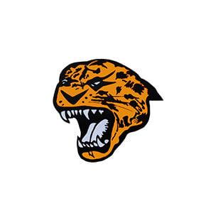 Malvern Leopards logo pic.