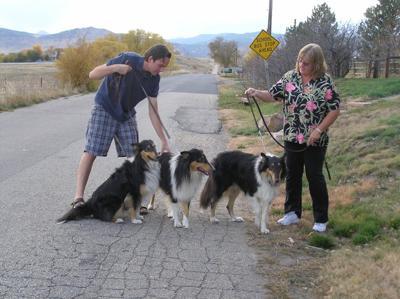 dog park image