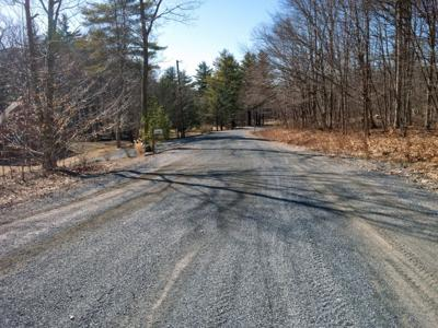 Wilcox Road