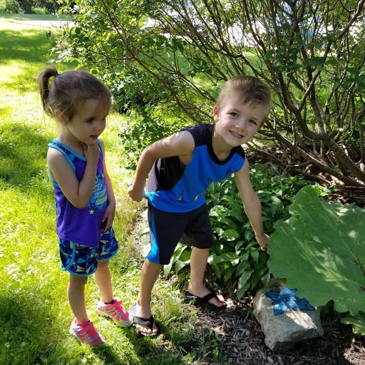 Butterfly hunt promotes fun, education