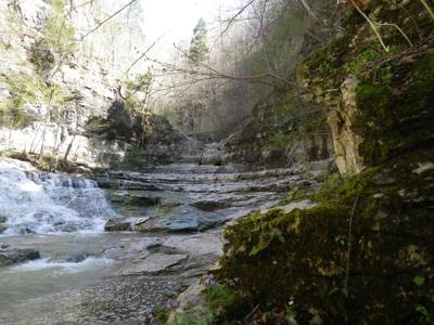 Go take a hike: Experience some of the nature that Tennessee has to offer this weekend for National Trails Day