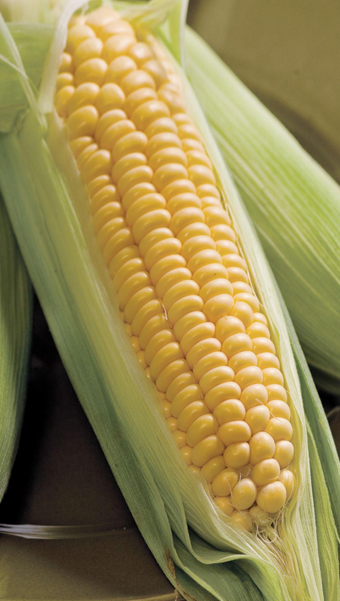 Are You afraid of GMO foods?
