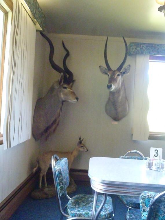 The Sylvania Diner