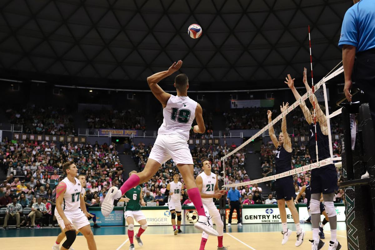 Five UH Rainbow Warriors named AVCA All-Americans