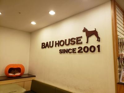 Welcome to Bau House