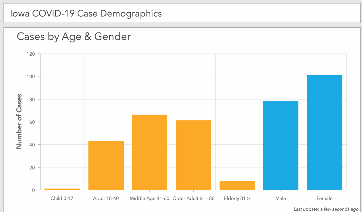 Iowa COVID-19 case demographics