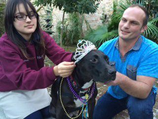Andouille and Ashley reign as royalty of Mardi Gras Krewe of Barkus Parade in New Orleans