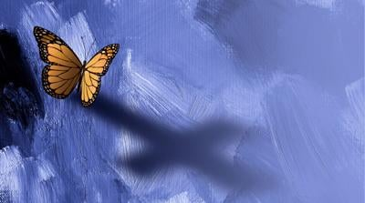 Graphic Butterfly with Cross Shadow background