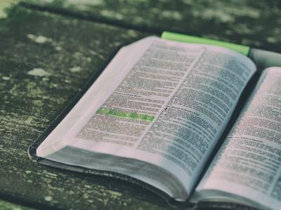 Bible.image.jpg