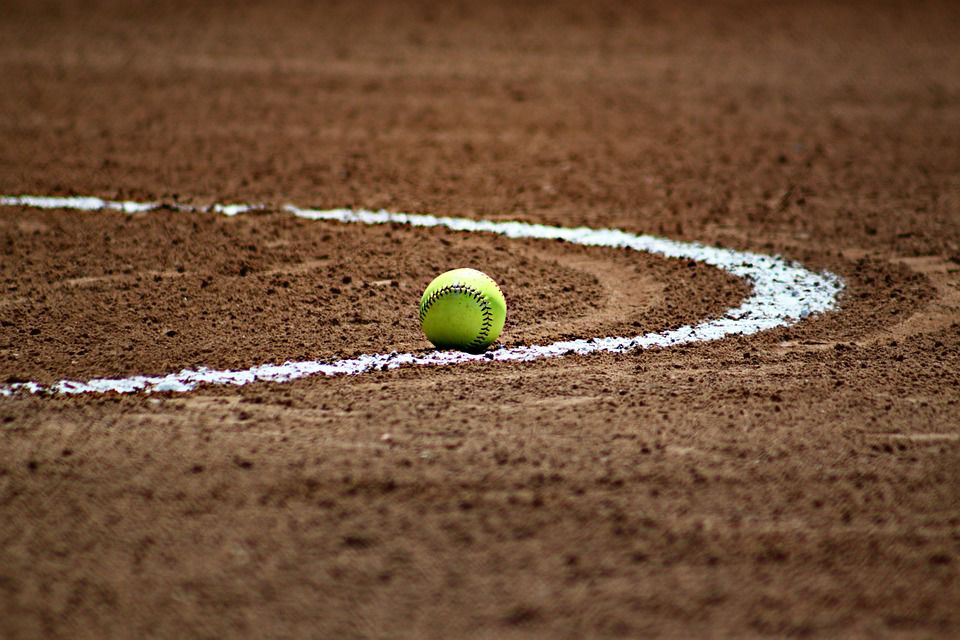 Area Roundup: Magna Vista's Scales named All-State | Sports