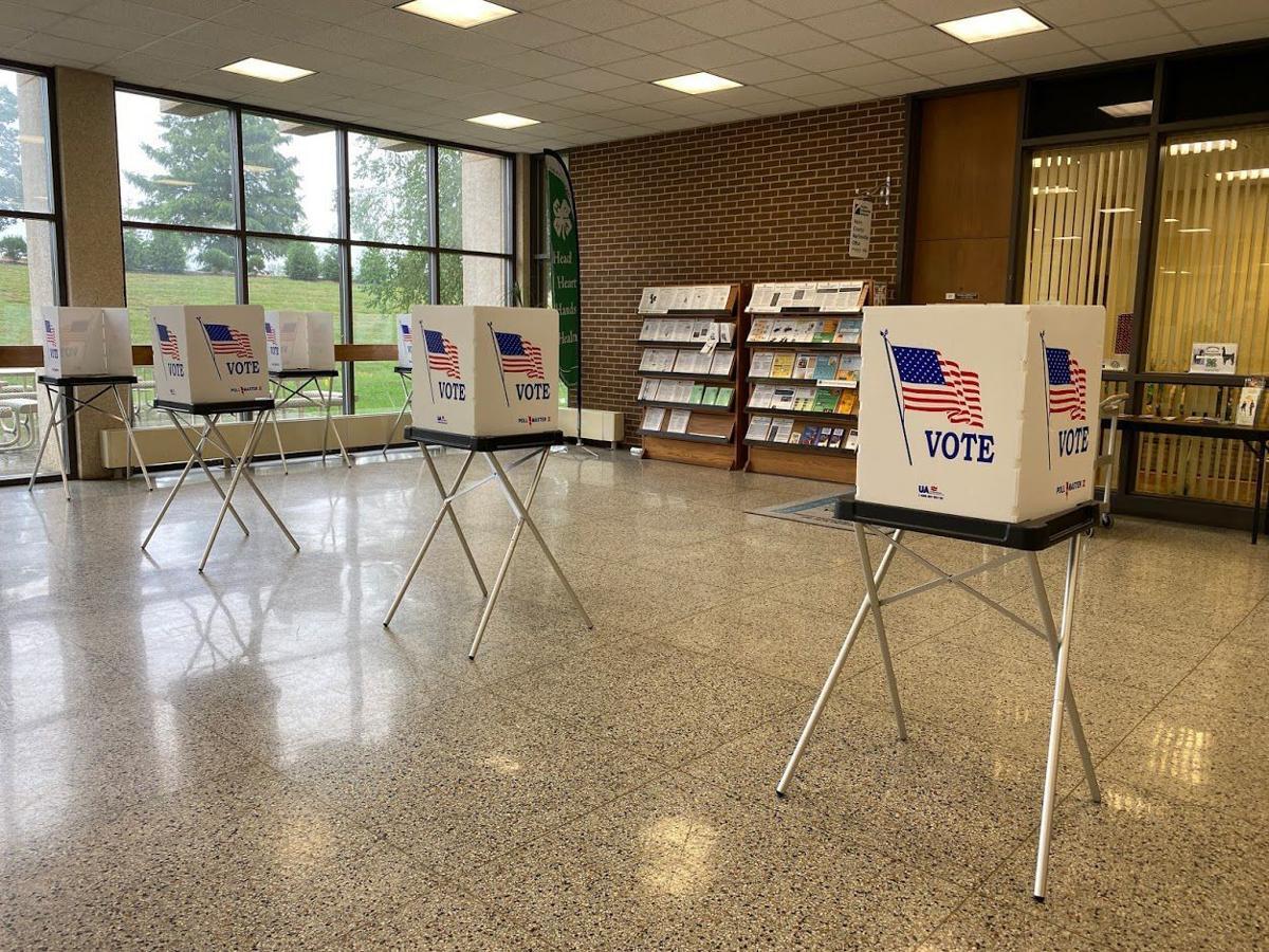 early_voting1.JPG