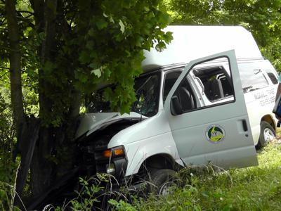 IMAGE: 3 injured after transit van strikes tree