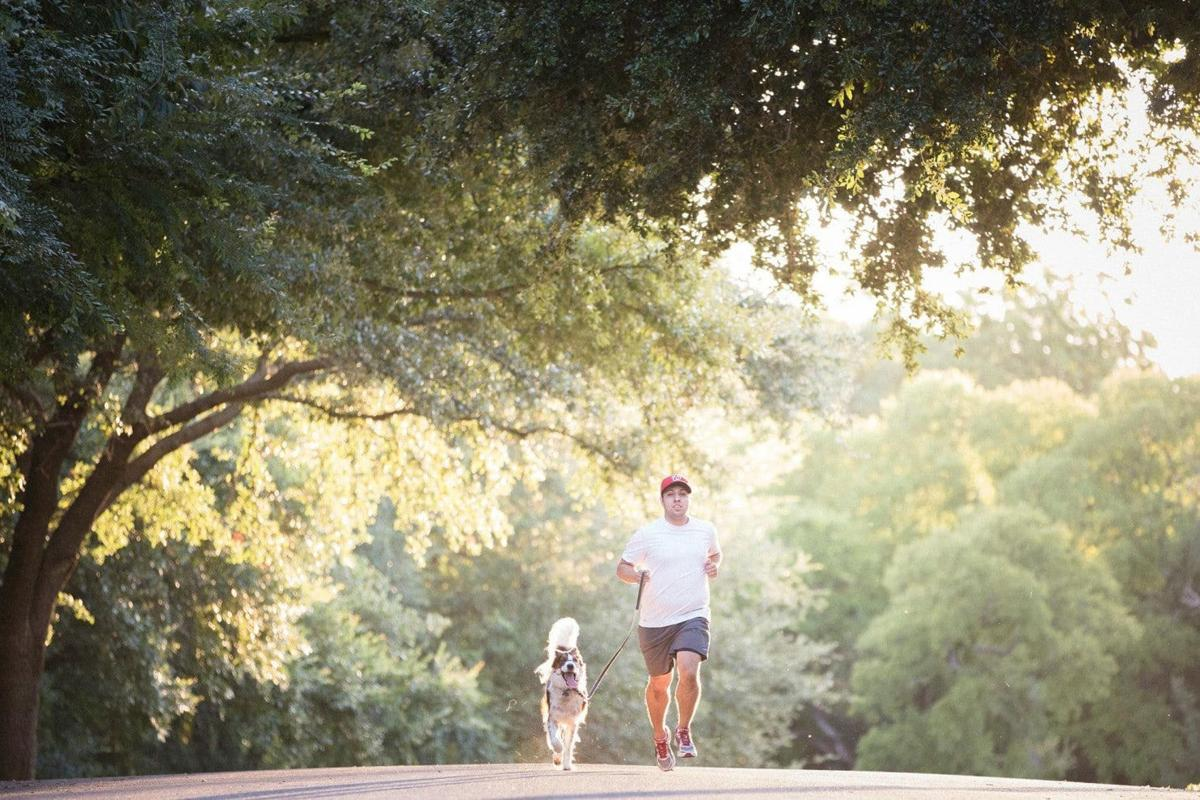 Why your run could benefit from four extra legs