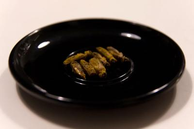 26 earth edible-insects.jpg