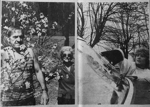 10 Archives-blooms to frost.jpg