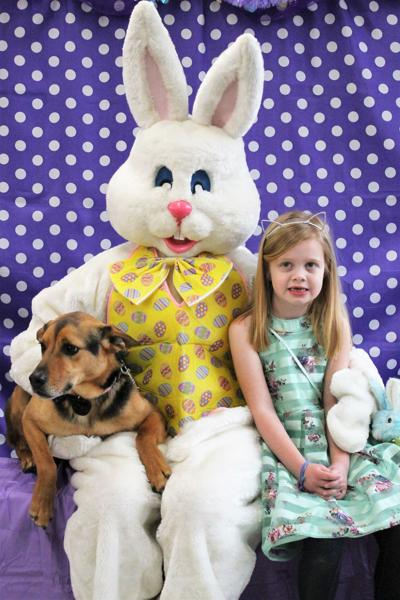 12 Pets Easter Bunny.jpg