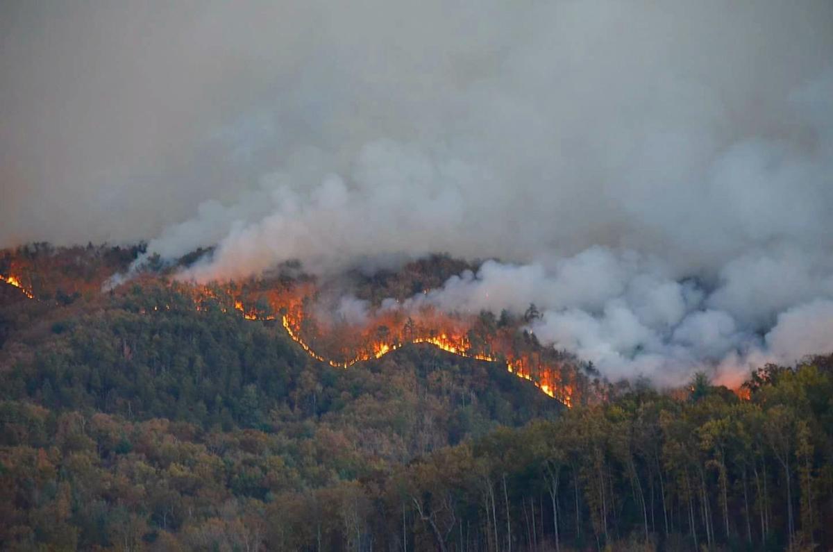 Steven Cooke fire photos  (4).jpg