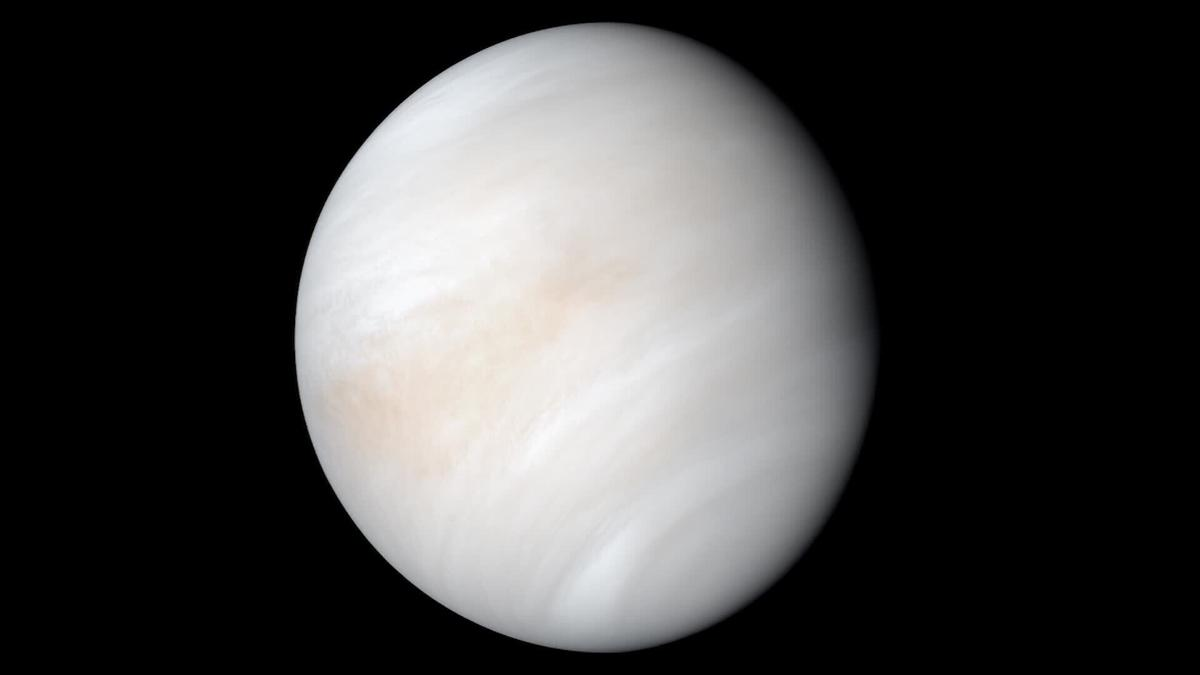 Venus isn't habitable -- and it could be all Jupiter's fault