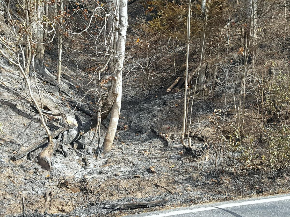 Wildfires prompt State of Emergency