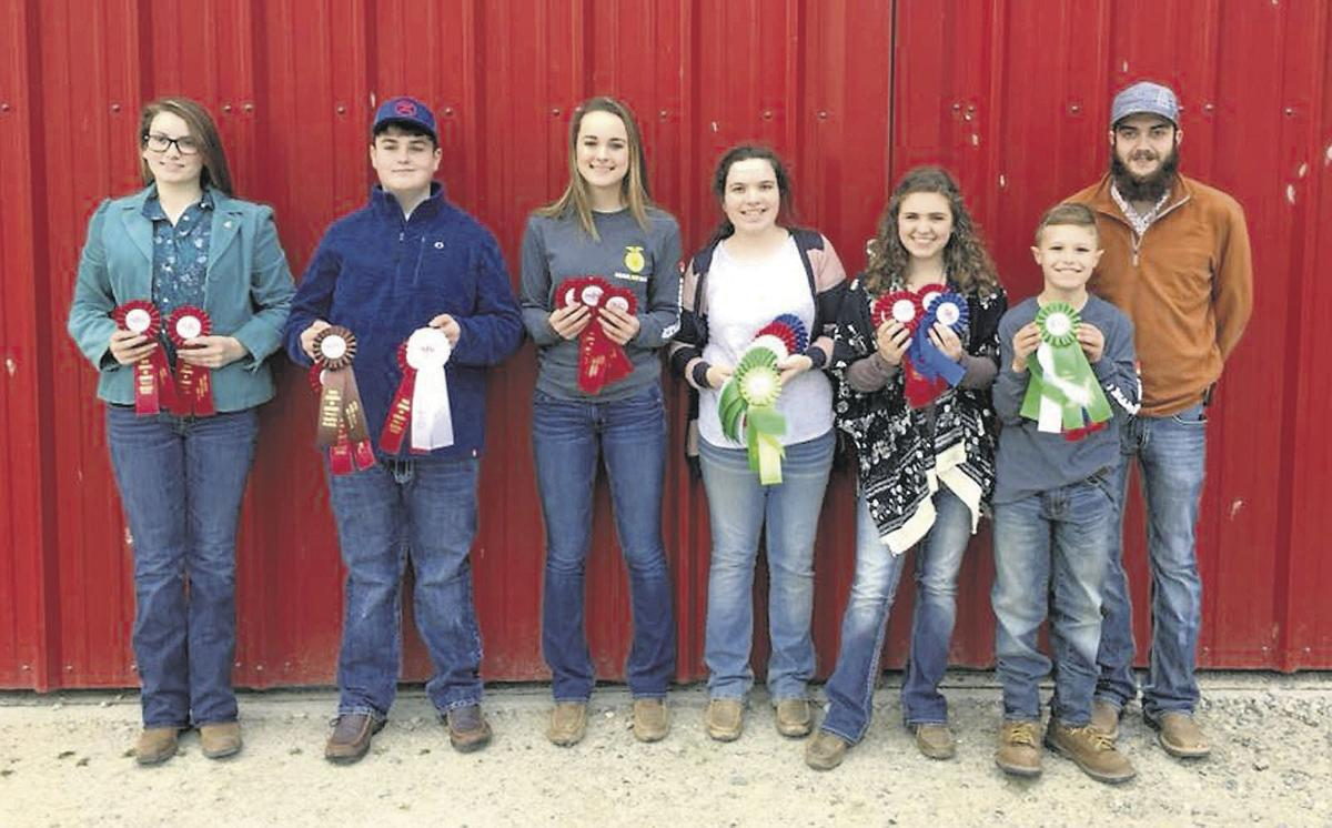 4-H Livestock Judging team does well in competition