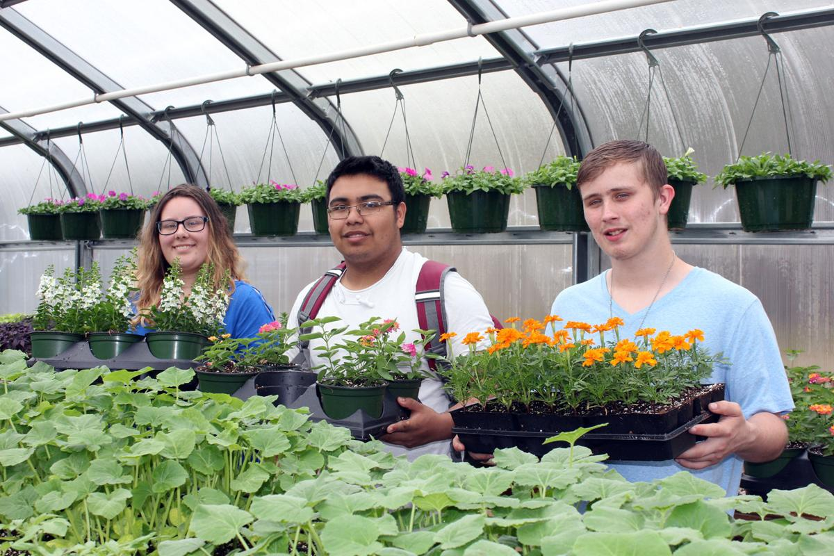 Titan Greenhouse selling plants for annual fundraiser