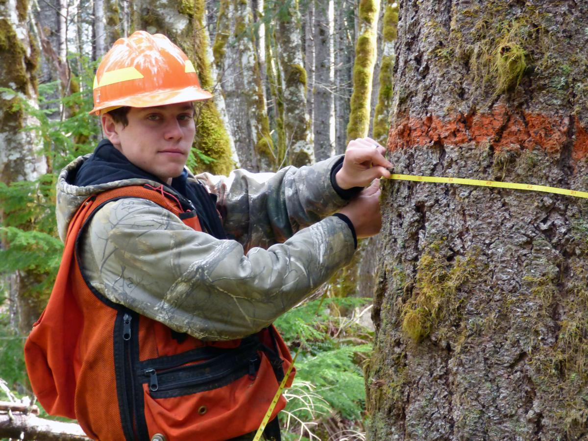 VetsWork returns to National Forest: Apply now for open internship in Nebo