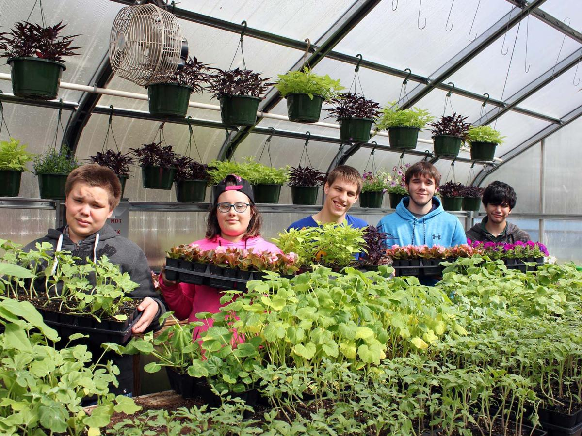 Time to go green; Titan Greenhouse launches annual sale