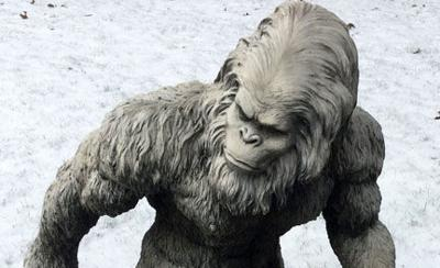 Scott Hollifield: On the trail of a no-good, dirty-rotten Bigfoot thief