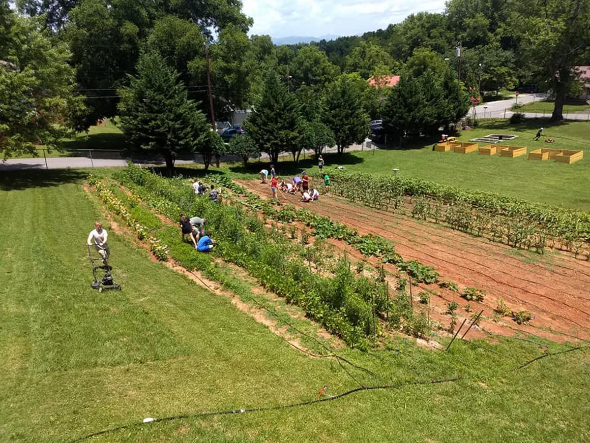 Tabernacle Community Garden to celebrate second year of operation