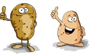 Scott Hollifield: Is potato case headed to court of a-peels?