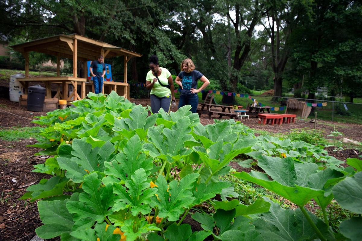 Poverty, Interrupted in Community Garden