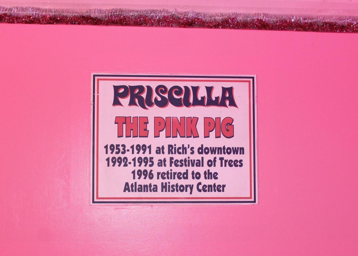 110619_MNS_Pink_Pig_002 sign