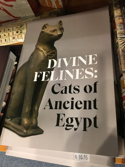 Divine Felines official guide
