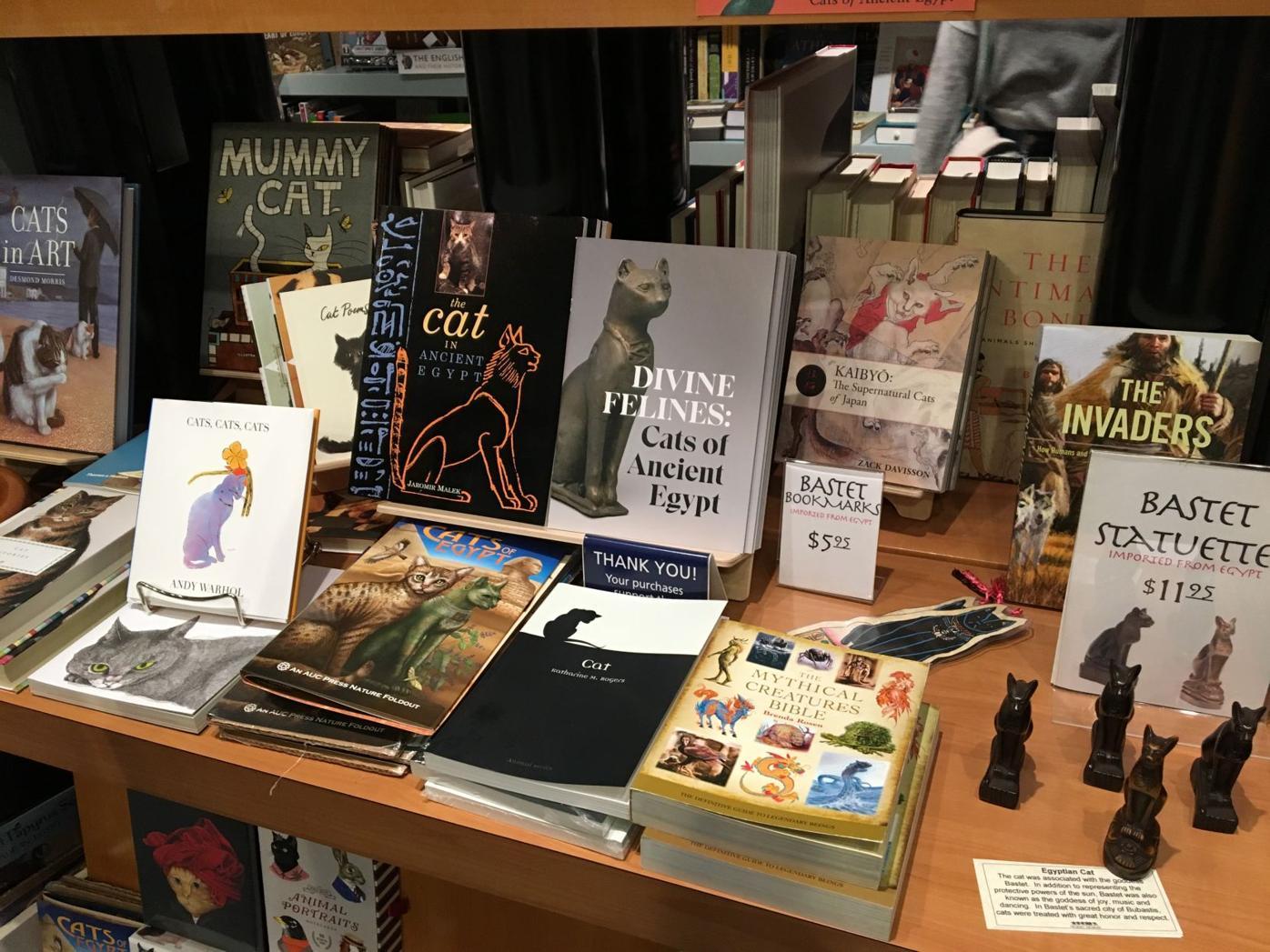 Carlos Museum bookshop display 01